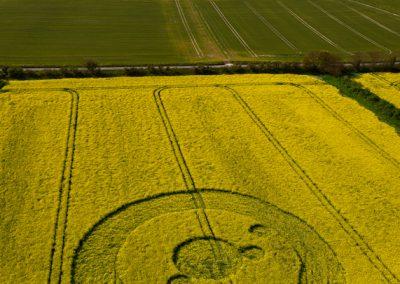 Uffington White Horse, Oxfordshire | 19th May 2012 | Oilseed Rape