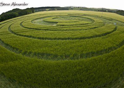 Manton Drove, Wiltshire | 2nd June 2012 | Barley P