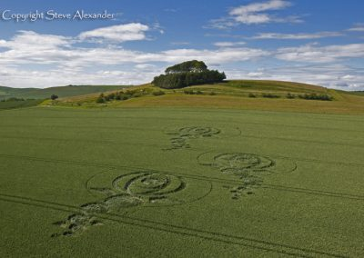 Woodborough Hill, Wiltshire | 9th June 2012 | Wheat L3
