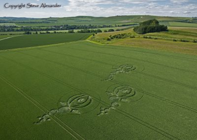 Woodborough Hill, Wiltshire | 9th June 2012 | Wheat L2