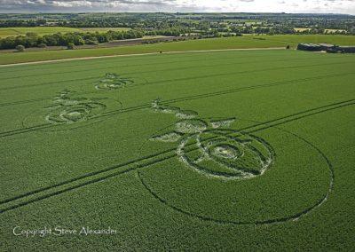 Woodborough Hill, Wiltshire | 9th June 2012 | Wheat L5