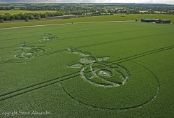 Woodborough Hill, Wiltshire   9th June 2012   Wheat L5