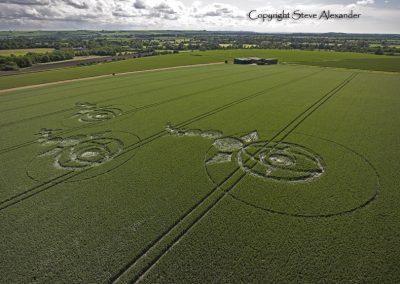Woodborough Hill, Wiltshire | 9th June 2012 | Wheat L4