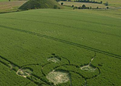 Silbury Hill, Wiltshire | 12th June 2012 | Wheat L