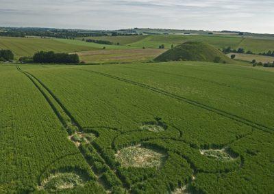 Silbury Hill, Wiltshire | 12th June 2012 | Wheat L2