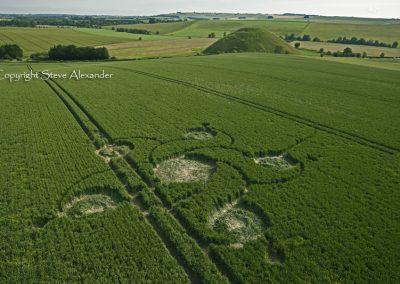 Silbury Hill, Wiltshire | 12th June 2012 | Wheat L3