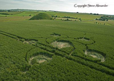 Silbury Hill, Wiltshire | 12th June 2012 | Wheat L4