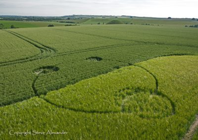 Silbury Hill, Wiltshire | 13th June 2012 | Wheat and Barley L