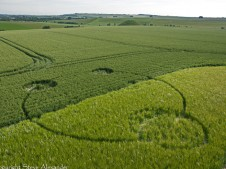 Silbury Hill, Wiltshire   13th June 2012   Wheat and Barley L