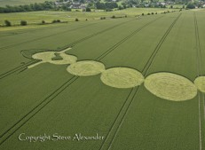 Adams Grave near Alton Barnes, Wiltshire | 25th June 2012 | Wheat CUT2