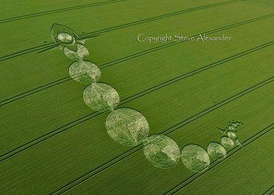 Adams Grave near Alton Barnes, Wiltshire | 25th June 2012 | Wheat