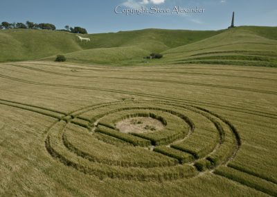 Cherhill White Horse, Wiltshire | 25th June 2012 | Barley L