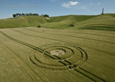 Cherhill White Horse, Wiltshire | 25th June 2012 | Barley L3