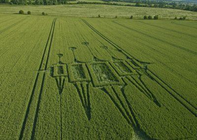 Stanton St Bernard, Wiltshire | 29th June 2012 | Wheat L2