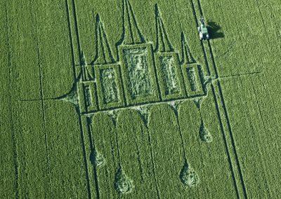 Stanton St Bernard, Wiltshire | 29th June 2012 | Wheat OH2