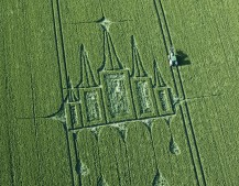 Stanton St Bernard, Wiltshire   29th June 2012   Wheat OH2