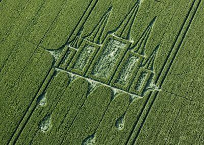 Stanton St Bernard, Wiltshire | 29th June 2012 | Wheat OH3