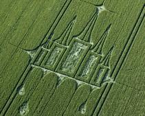 Stanton St Bernard, Wiltshire   29th June 2012   Wheat OH3