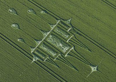 Stanton St Bernard, Wiltshire | 29th June 2012 | Wheat OH4
