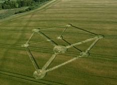 Chilcomb Down near Winchester, Hampshire   1st July 2012   Barley L