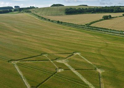 Chilcomb Down near Winchester, Hampshire | 1st July 2012 | Barley L2