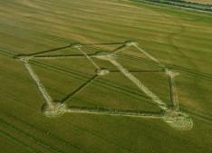 Chilcomb Down near Winchester, Hampshire   1st July 2012   Barley L2