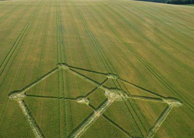 Chilcomb Down near Winchester, Hampshire | 1st July 2012 | Barley L3