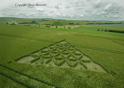 Waden Hill near Avebury, Wiltshire | 1st July 2012 | Wheat L4