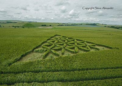 Waden Hill near Avebury, Wiltshire | 1st July 2012 | Wheat L5