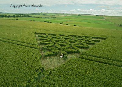 Waden Hill near Avebury, Wiltshire | 1st July 2012 | Wheat LOW