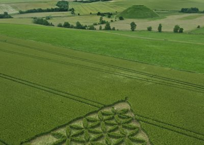 Waden Hill near Avebury, Wiltshire | 1st July 2012 | Wheat L3