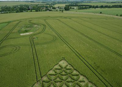 Waden Hill near Avebury, Wiltshire | 1st July 2012 | Wheat L