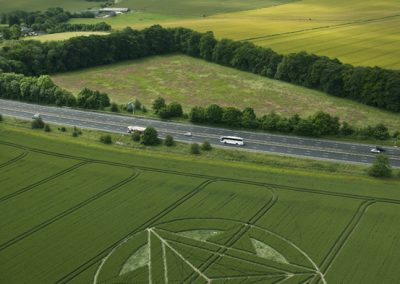 Wanborough Plain near Liddington, Wiltshire | 1st July 2012 | Wheat L