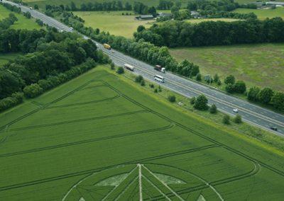 Wanborough Plain near Liddington, Wiltshire | 1st July 2012 | Wheat L2
