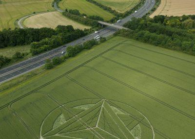 Wanborough Plain near Liddington, Wiltshire | 1st July 2012 | Wheat L3