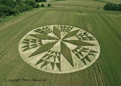 Corley near Coventry, Warwickshire | 11th July 2012 | Wheat L2