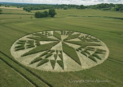 Corley near Coventry, Warwickshire | 11th July 2012 | Wheat L3