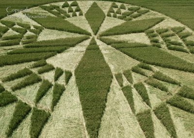 Corley near Coventry, Warwickshire | 11th July 2012 | Wheat CL