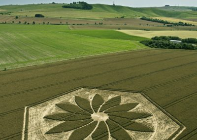 Yatesbury, Wiltshire | 17th July 2012 | Wheat Man Made Project
