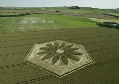 Yatesbury, Wiltshire | 17th July 2012 | Wheat Man Made Project 2