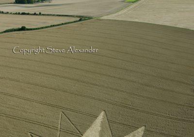 Longwood Warren near Winchester, Hampshire | 23rd July 2012 | Wheat L