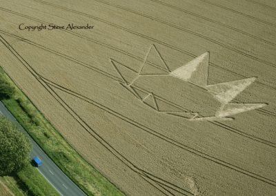 Longwood Warren near Winchester, Hampshire | 23rd July 2012 | Wheat RS