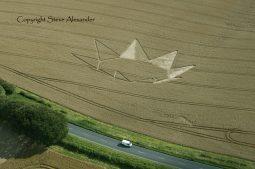 Longwood Warren near Winchester, Hampshire   23rd July 2012   Wheat RS2