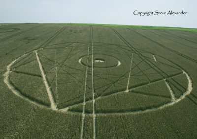 Bishops Canning Down, Wiltshire | 24th July 2012 | Wheat LOW