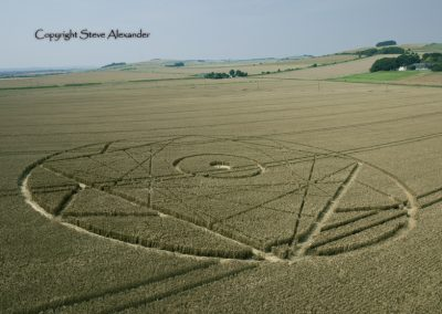 Bishops Canning Down, Wiltshire | 24th July 2012 | Wheat LOW3