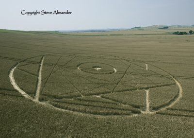 Bishops Canning Down, Wiltshire | 24th July 2012 | Wheat LOW2