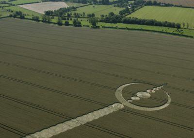 Windmill Hill, Wiltshire | 25th July 2012 | Wheat L4