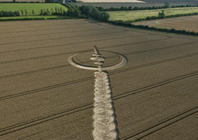 Windmill Hill, Wiltshire | 25th July 2012 | Wheat L