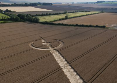 Windmill Hill, Wiltshire | 25th July 2012 | Wheat L2