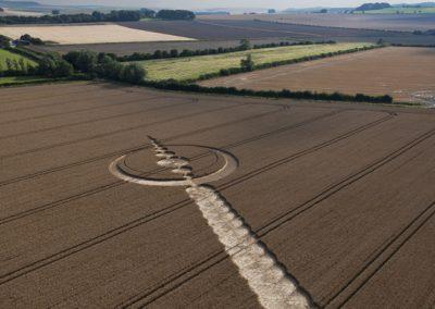 Windmill Hill, Wiltshire | 25th July 2012 | Wheat L2